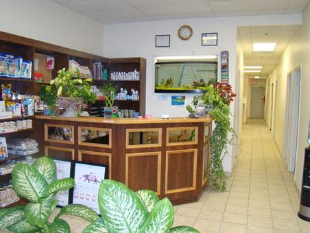 Vet Clinic Mississauga